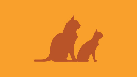Two cats sitting together icon